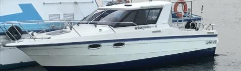体験乗船会‼️in横浜‼️